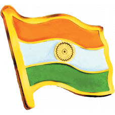 Mittal Group Indian Flag Lapel Pin